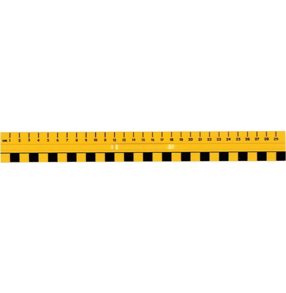 Primary Ruler