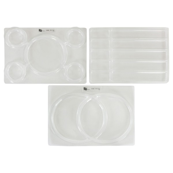 Transparent Sorting Trays - Bar Chart, Web and Venn Diagram
